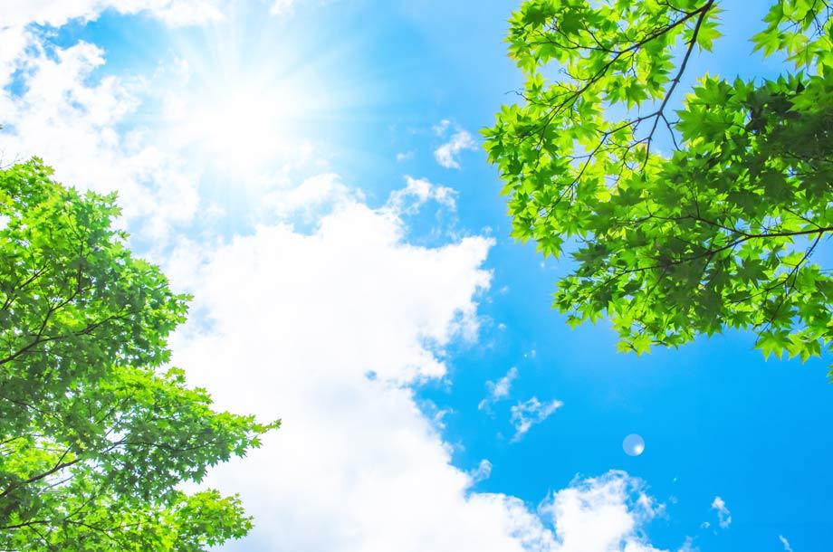 【理英会監修】お受験通信2021|その4|良質な学びに繋がる夏の過ごし方のポイントは