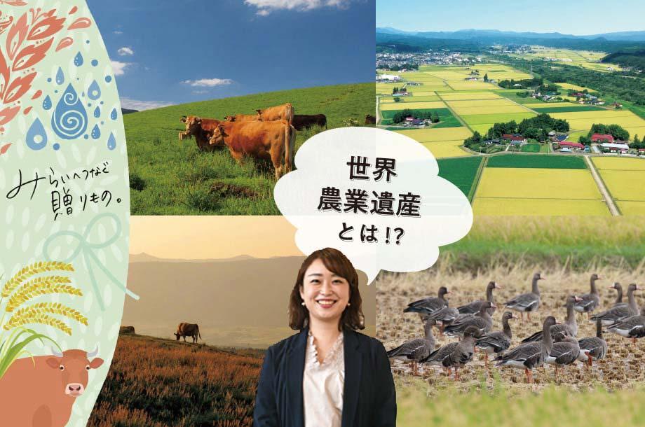 土地や文化について日本の魅力を再発見できる「世界農業遺産」
